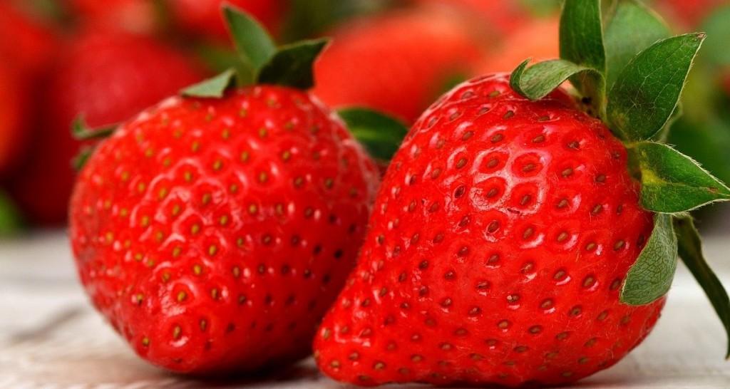 Fresa Strawberries 2 1201x640